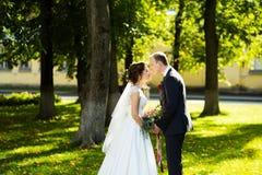 Bei sposa e sposo nel parco un giorno soleggiato Immagine Stock Libera da Diritti