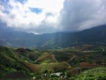 Bei terrazzi del riso fotografia stock libera da diritti