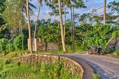 Bei terrazzi del riso e del villaggio in Ubud, isola di Bali, Indone Immagini Stock Libere da Diritti