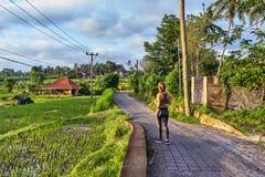 Bei terrazzi del riso e del villaggio in Ubud, isola di Bali, Indone Fotografia Stock Libera da Diritti