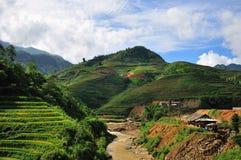 Bei terrazzi del riso in Sapa, Vietnam Fotografie Stock Libere da Diritti
