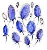 Bei tulipani blu su un fondo bianco watercolor Immagine Stock