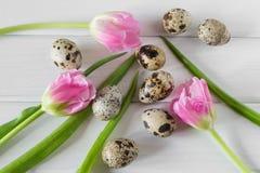 Bei tulipani con le uova di quaglia su fondo di legno leggero Fotografia Stock Libera da Diritti