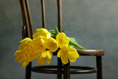 Natura morta con i tulipani gialli fotografia stock libera da diritti