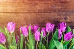 Bei tulipani porpora su fondo rustico scuro fotografia stock