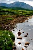 Bei valle e fiume della montagna Fotografia Stock