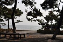 Beidaihe nadmorski krajobraz fotografia royalty free