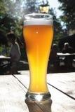 Beiers bier in een biertuin Stock Afbeeldingen