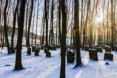 Beiers Joods Forest Graveyard stock afbeeldingen