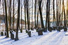 Beiers Joods Forest Graveyard royalty-vrije stock afbeelding