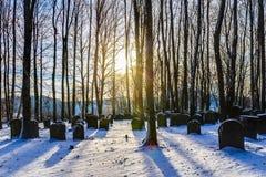 Beiers Joods Forest Graveyard stock afbeelding