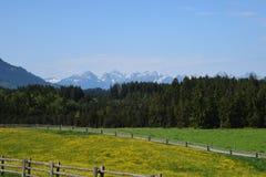 Beiers Landschap stock foto