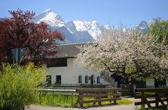 Beierse Alpen Stock Foto's