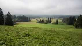 Beierse gebieden en weiden Stock Afbeeldingen