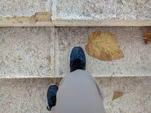 Beiga för kvinna` s flåsar och färgrika skor i blått, gräsplan, guling royaltyfria foton