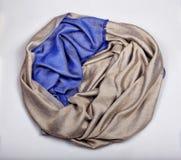 Beiga- och blåttkaschmirhalsduk Royaltyfria Bilder