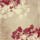 Beige achtergrond met bladeren Stock Foto