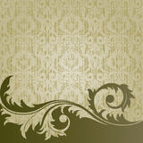 Beige background. Beige  retro background with  flowers and leaves Royalty Free Stock Image