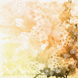 Beige  background with butterfly Stock Photography