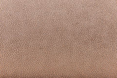 Beige background skin effect Stock Image