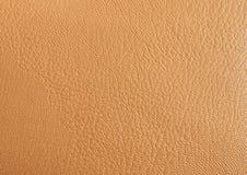 Beige bakgrund för läder som specificeras högt Fotografering för Bildbyråer