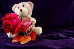Beige bear with rose and hearts. A dry rose. Three heart. Royalty Free Stock Image