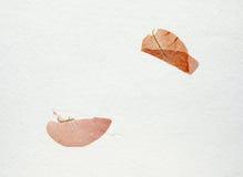 beige blank hand - texturerat gjort papper Fotografering för Bildbyråer