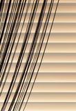 Beige blinds and curtains rope Stock Photos