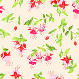 Beige blooming fuchsia seamless vector print Royalty Free Stock Images