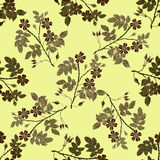 Beige briar, brier pattern. Vector vintage seamless pattern with eglantine. Vector beige briar pattern Stock Photography