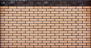 Beige brick wall texture Stock Images