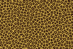 Beige brown leopard fur. Texture Royalty Free Stock Images
