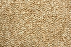 A beige carpet texture. Close-up Royalty Free Stock Images