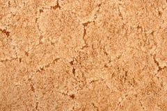 A beige carpet texture Stock Photography