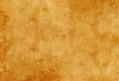 Free Beige Chamois Stock Photography - 4985132