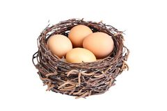 Beige chicken eggs in a basket. Of birch branches. Egg in the brown nest royalty free stock photography