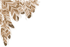 Beige drawn feathers background. Stock Image
