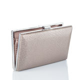 Beige female clutch Stock Images