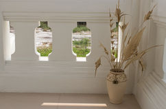 Beige flower vase on balcony. Beige dried flower vase on white balcony Stock Photo