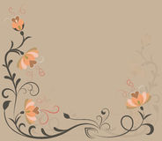 Beige flowers background Stock Photos