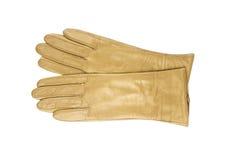 Beige lederner Frauenhandschuh lokalisiert auf weißem backgr Lizenzfreie Stockbilder