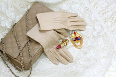 Beige gloves Stock Image