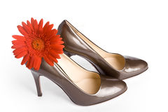 Beige-golden female new varnished shoes Royalty Free Stock Photography