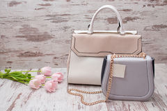 Beige and gray bags on a wooden background, pink tulips. Fashionable concept Stock Images