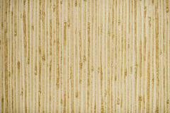 BEIGE GREEN TEXTURE OF BAMBOO,AND ORIENTAL BACKGROUND. Surface , closeup  ,floor, natural,  brown  abstract,  macro Royalty Free Stock Photography