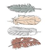 Beige, grey and brown feathers set. Hand drawn vector sketch. vector illustration