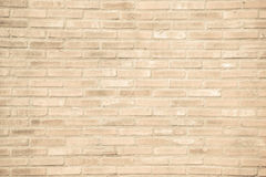 Beige grunge brick wall texture background Royalty Free Stock Photography