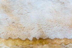 Beige imitation fur for background Royalty Free Stock Photography