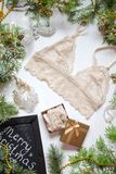 Beige lace bra on the white Christmas background. Fashion access Stock Photos