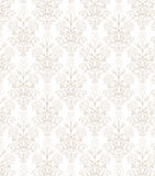 Beige lacy Royalty Free Stock Photos